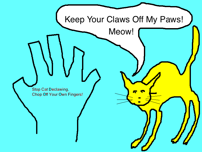 catposter