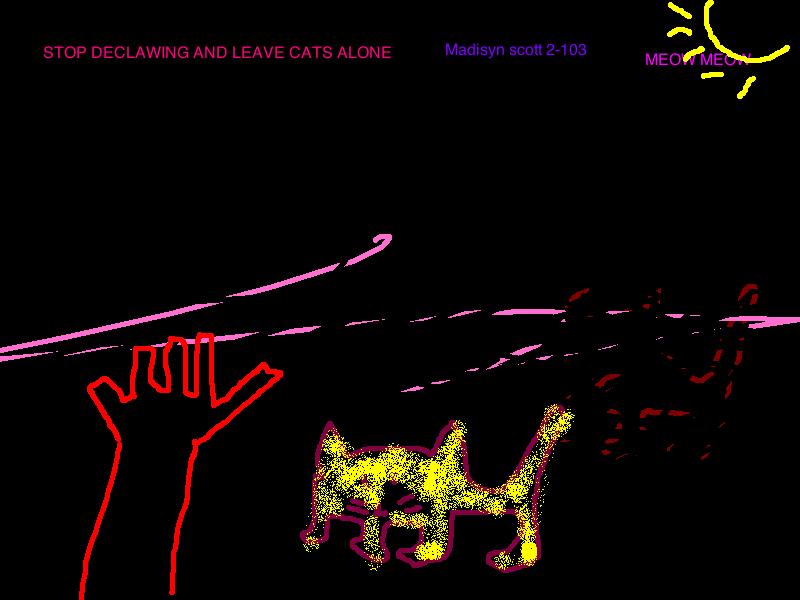 madisyn-cat