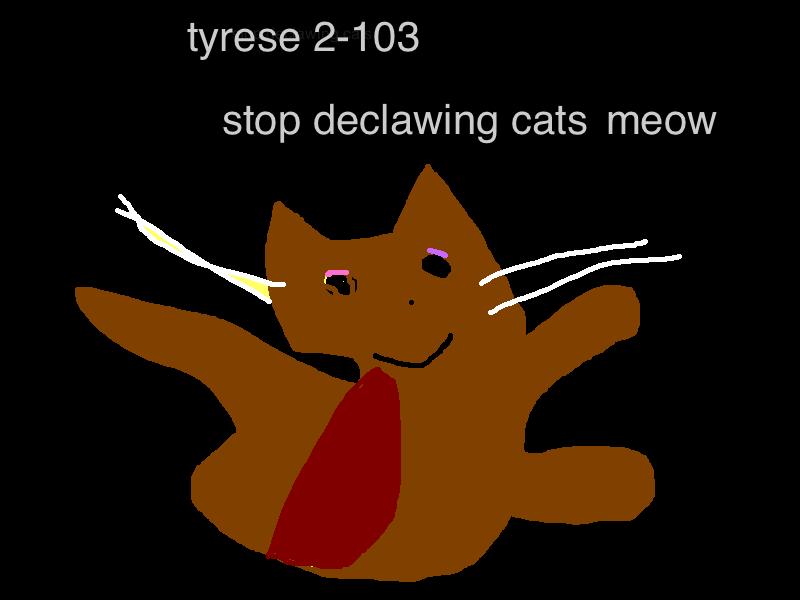 tyrese-cat